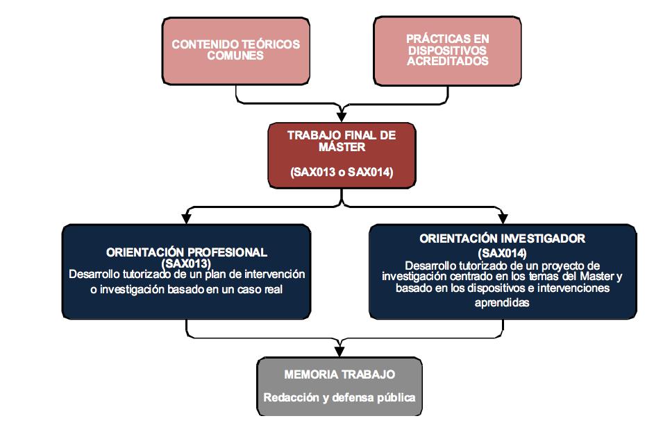 Esquema i estructura del TFM